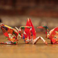 Con Papel: origami creativo plegado en León