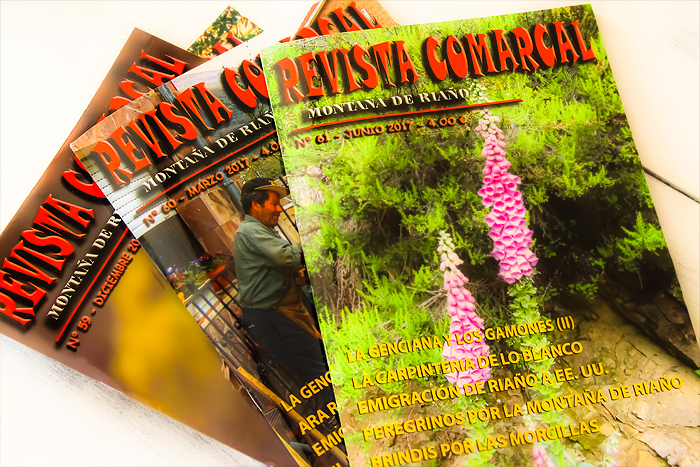 Revista Comarcal Leotopía